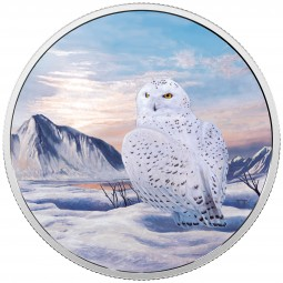 2 Unzen Silber Proof Arctic animals and northern lights: Snowy Owl 30 CAD Kanada 2018