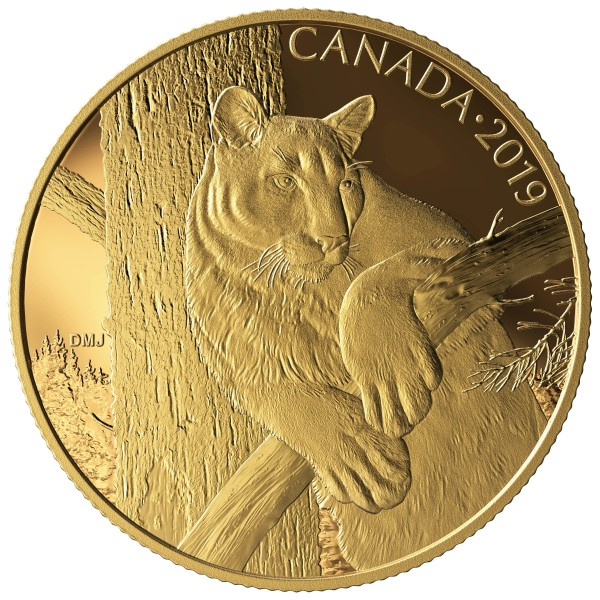 1 Unze Gold Proof Canadian Wildlife Portraits: Der Puma The Cougar 350 Dollar Kanada 2019