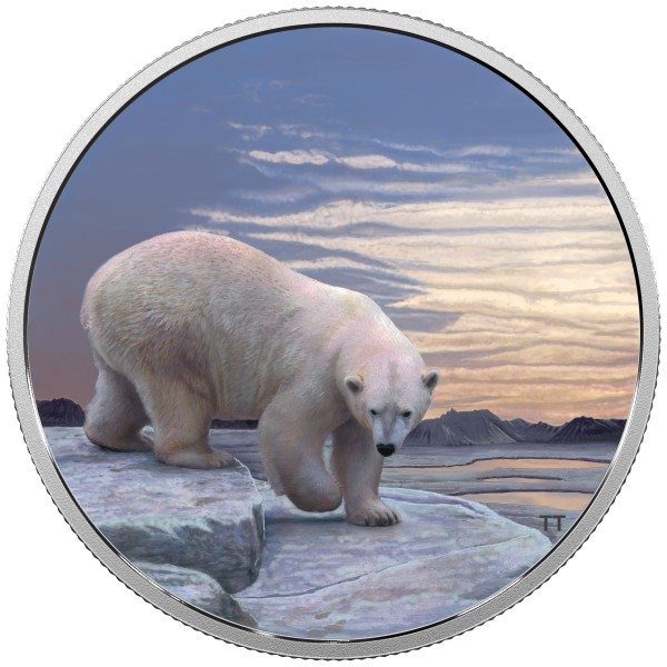 2 Unzen Silber Proof Arctic animals and northern lights: Polar Bear 30 CAD Kanada 2018