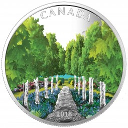 20 Dollar 1 Oz Silber Proof Maple Tree Tunnel Kanada 2018 Canada