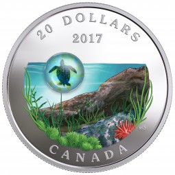 1 Oz Silber Proof Under the Sea: Sea Turtle - Seeschildkröte 20 CAD Kanada 2017 Canada