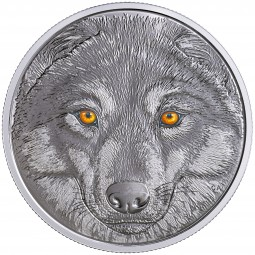 15 CAD Silber Proof In the eyes of the Wolf Kanada 2017 Canada