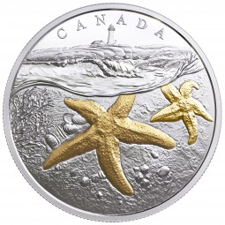 1 Oz Silber Proof gilded FROM SEA TO SEA: Atlantic Starfish Kanada 20 CAD 2017