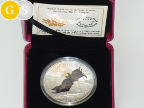 20 Dollar Silber Proof Soaring Bald Eagle Colour Weißkopfseeadler Kanada 2014